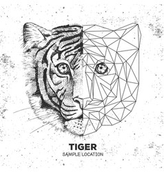 hipster animal realistic and polygonal tiger face vector image vector image