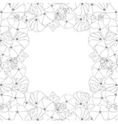 Alcea rosea outline border - hollyhocks vector