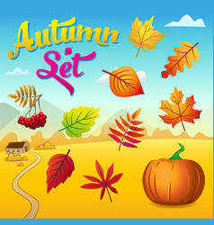 autumn set with autumn leaves and pumpkin vector image
