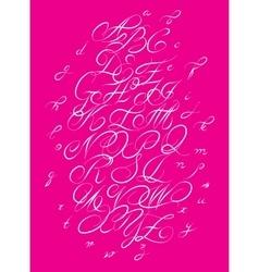 Calligraphic alphabet Design elements vector image