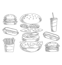 Fast food snacks and drinks sketches vector