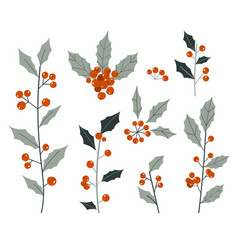 Hand drawn decorative christmas holly plant vector