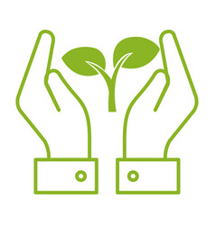 hands with leafs plant ecology icon vector image