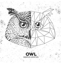 Hipster animal realistic and polygonal owl face vector