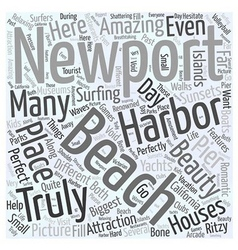 Newport Beach Beauty Word Cloud Concept vector