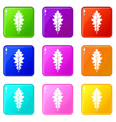 Oak leaf icons 9 set vector