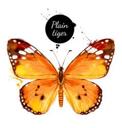 watercolor butterfly danaus chrysippus plain vector image