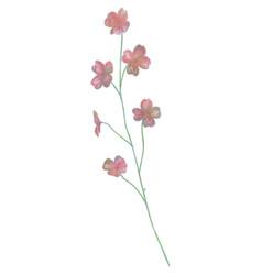 drawn watercolor flower vector image vector image