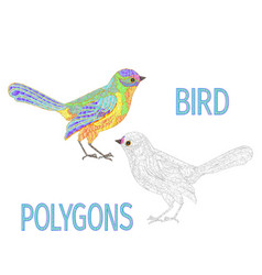 bird rainbow polygons coloured and outline vector image