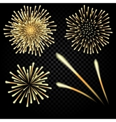 Bright fireworks in honor of the holiday on a vector