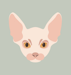 Cat sphinx flat style front vector