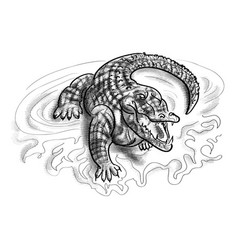 crocodile in the water vector image