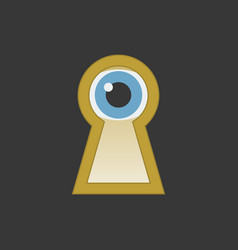 eye in keyhole flat design icon vector image