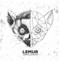 Hipster animal realistic and polygonal lemur face vector