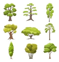Stylized trees vector