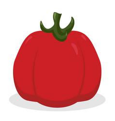 Tomato icon vegetable organic eco design vector