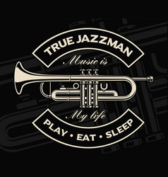 trumpet on the dark background vector image