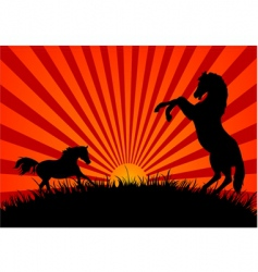 two horses at sunset vector image