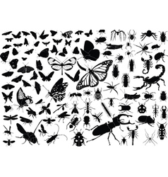 100 insects vector image