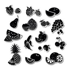 Retro fruit set vector image vector image