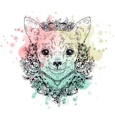 Chihuahua graphic dog abstract vector