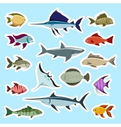 Colorful fish stickers set vector image