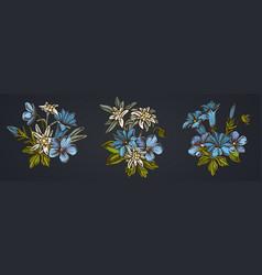 Flower bouquet edelweiss meadow geranium vector