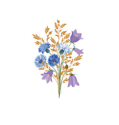 Flowers isolated floral summer bouquet meadow vector