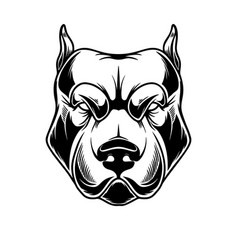 Head pit bull in vintage monochrome style vector