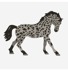 Horse profile vector image