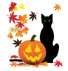 jack o lantern and cat vector image