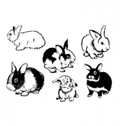 rabbits graphic vector image