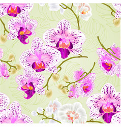 seamless texture orchids purple and white vector image