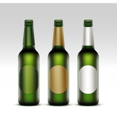 Set of Bottles Light Beer with labels Isolated vector image