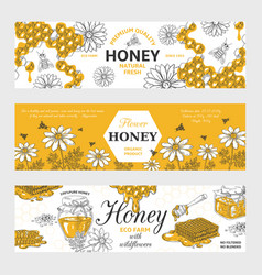 Honey labels honeycomb and bees vintage sketch vector