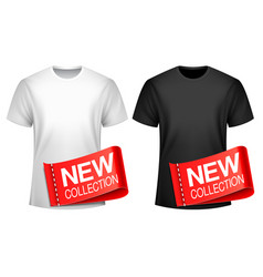 men t-shirt new collection vector image