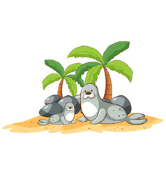 Seals on beach on white background vector