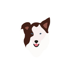 Border collie brown head vector
