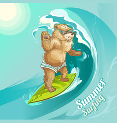 cartoon bear surfing riding wave vector image