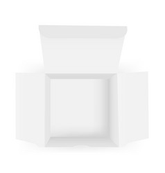 empty opened paper box mock up - top view vector image
