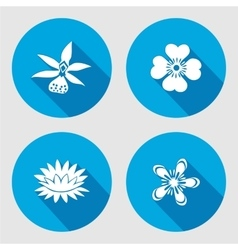 Flower icons set Anemone chamomile forget-me vector