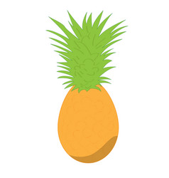 Isolated pineapple fruit vector