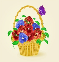 Pansies spring flowers in a basket with butterfly vector image