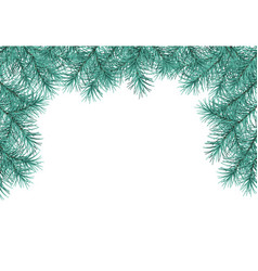 pine tree branches vector image