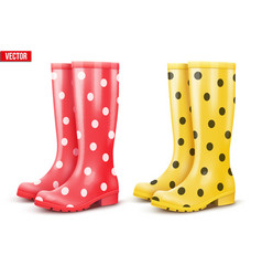 Set of air of rain boots vector