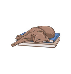 cute brown cat pet animal sleeping on a stack of vector image