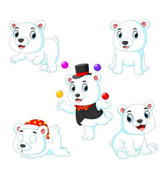 bear playing with ball with the diferent posing vector image