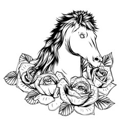 beautiful horse with roses drawn vector image