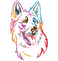 Colorful decorative portrait dog berger blanc vector