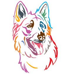 Colorful decorative portrait of dog berger blanc vector